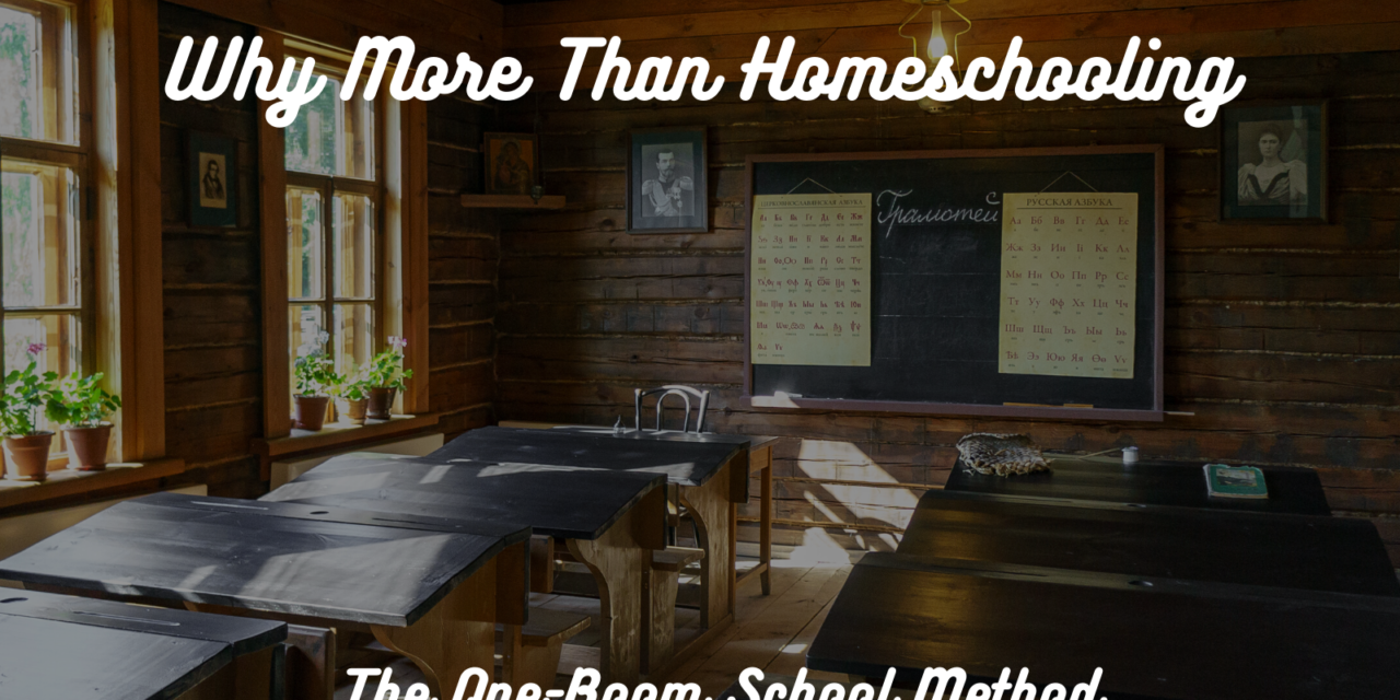 Why More than Homeschooling